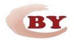 Shanghai Bangying Industrial Co.,Ltd.